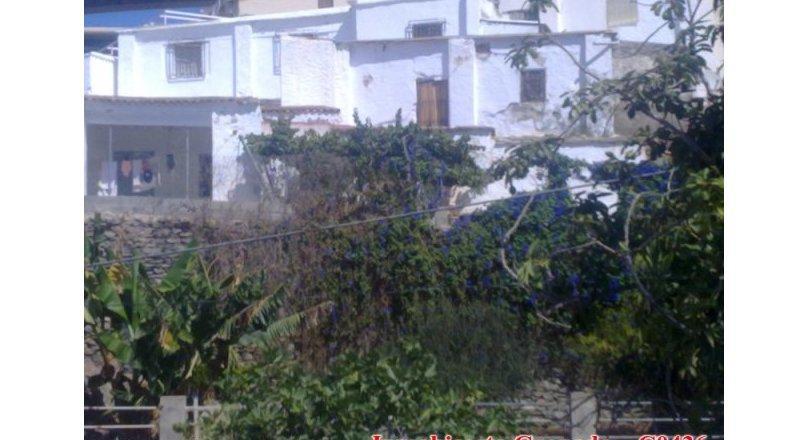 C0436 - Huarea, La Rabita